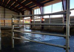Hjælp til staldbyggeri i Viborg